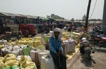 मंडी में 20 हजार क्विंटल की आवक, भीड़ ऐसी की देर रात तक नीलामी के बावजूद बच गए किसान