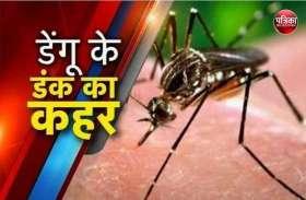 हमीरपुर में डेंगू के दो रोगी मिले, इलाज के लिए जयपुर एसएमएस में कराया भर्ती