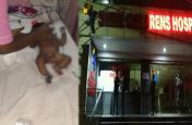 इलाज से पहले मिली मौत, बच्चों के अस्पताल में लगी भीषण आग, बड़ी लापरवाही आई सामने