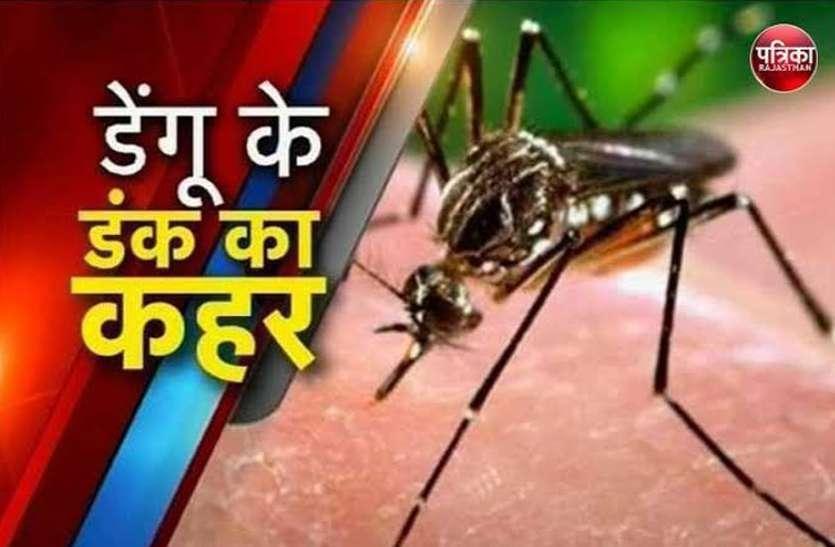 कोटा में कहर बरपा रहा डेंगू, 450 से ज्यादा लोग पॉजीटिव, स्क्रब टायफस भी लगा चुका शतक