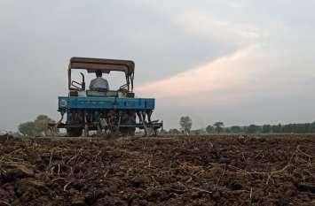 जिले में बारिश अच्छी होने से गेहूं का रकबा बढ़ा, चने का हुआ कम