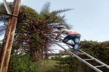 दीपावली पर जगमगाता रहे शहर, विद्युत कम्पनी ने की तैयारी
