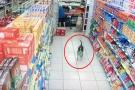 सुपरमार्केट में चोरी करते कुत्ते का वीडियो वायरल, cctv कैमरे में कैद हुई ये क्यूट घटना