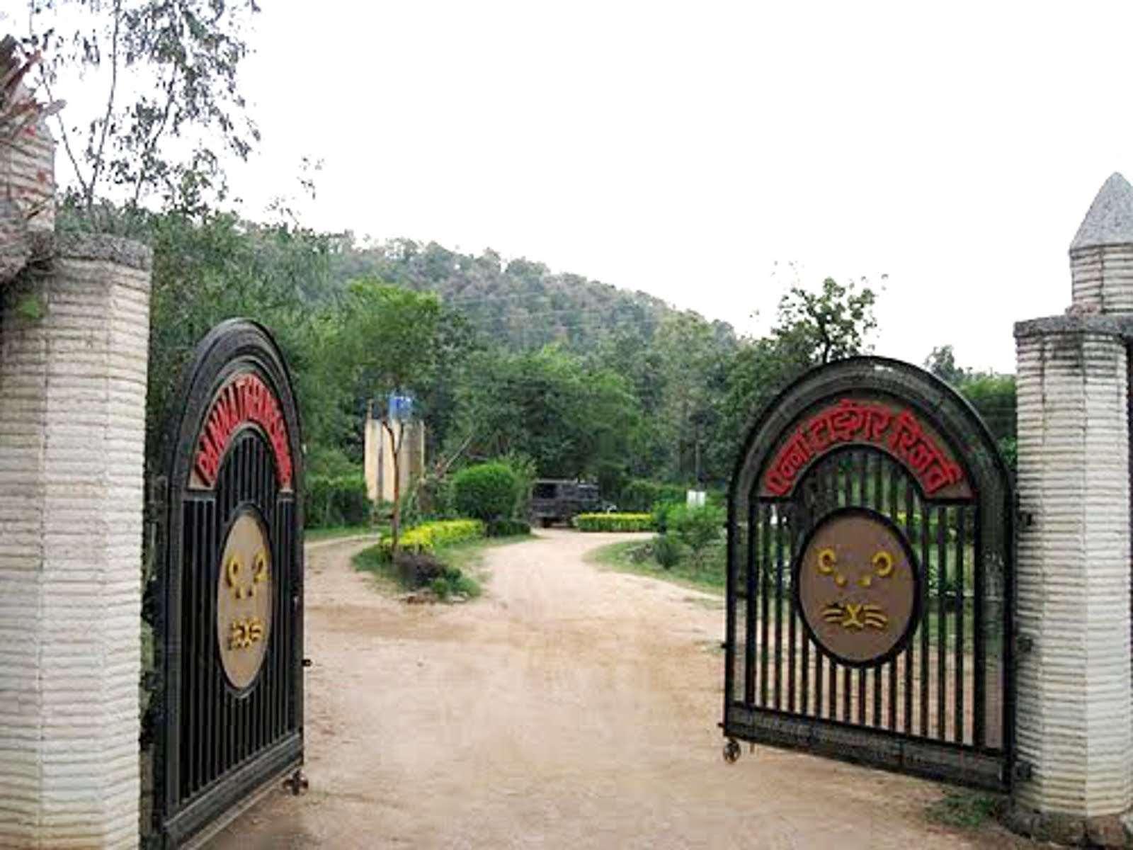 Panna National Park  Tiger Reserve