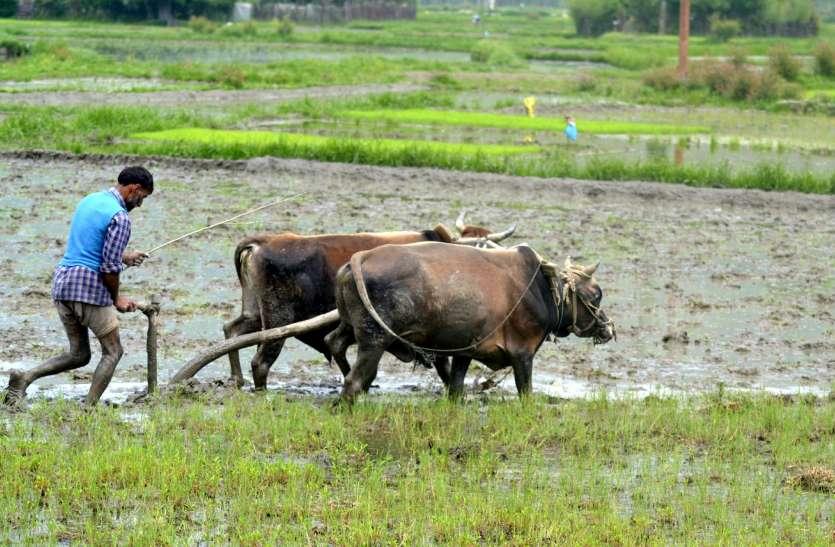 मोदी सरकार की योजना, करीब 12 करोड़ किसानों की बदल जाएगी जिंदगी