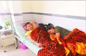 अलवर जिले में डेंगू का कहर, जिले में अब तक मिले 187 मरीज