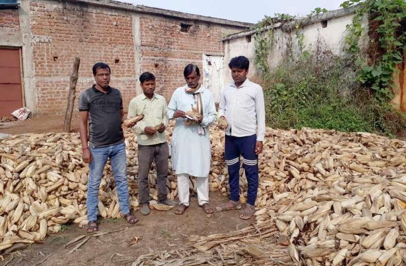 किसानों ने फसल नुकसानी में बीमा राशि की मांग