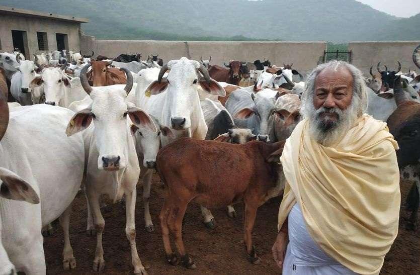 कायमदास 24 वर्ष से कर रहे गोसेवा, 85 वर्ष की उम्र में भी जुनून बरकरार, 700 गायों की कर रहे सेवा