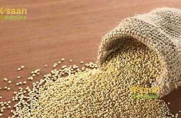 किनोवा के बीज भी मिलेंगे किसानों को