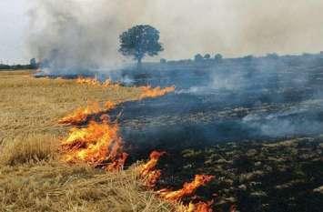 पराली जलाने वाले 64 किसानों से वूसला 1.65 हजार अर्थदण्ड, 8 लेखपालों को कारण बताओ नोटिस जारी