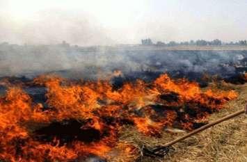 पराली जलाने में फंसे सपा MLC, प्रशासन ने दर्ज करवा दिया मुकदमा