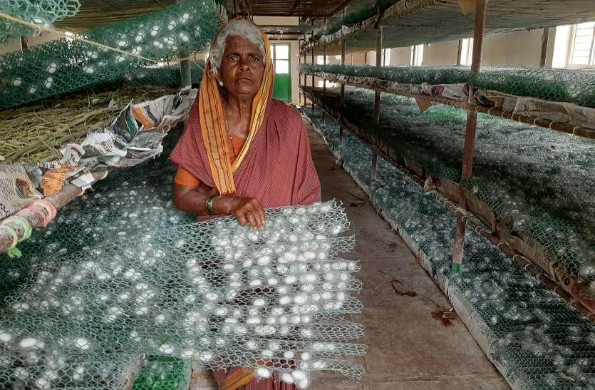 रेशम फसल से लाखों कमा रही है कोट्रम्मा