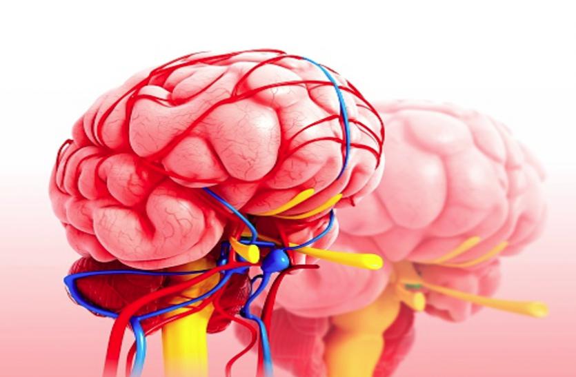Hypothalamus: हाइपोथैलेमस की समस्या में मस्तिष्क को नहीं मिलता पूरा पोषण