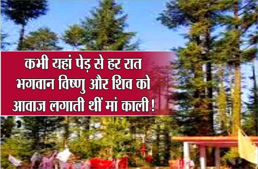 कभी इस पेड़ से हर रात को माता काली लगाती थीं, भगवान विष्णु और शिव को आवाज