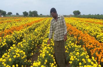फूलों की खेती के लिए युवाओं को जमीन देगी सरकार