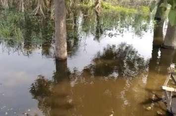 इस झील में बढ़ा जलस्तर तो लोग हो गए परेशान, सरकार से कर दी बड़ी मांग, देखें वीडियो