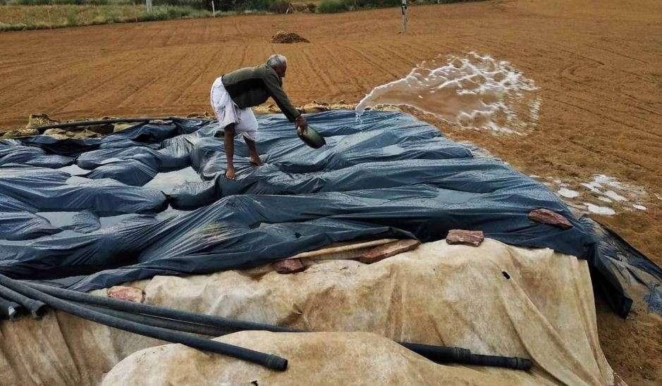 बेमौसम बरसात ने छीना किसानों का निवाला
