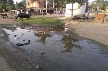 गांवों में स्वच्छता नदारद, सड़कों पर बह रही गंदगी, ग्रामीण परेशान