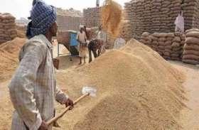 कागज में किसानों के अच्छे दिन, लेकिन धान खरीद केन्द्रों पर बेचारा बने फिर रहे अन्नदाता