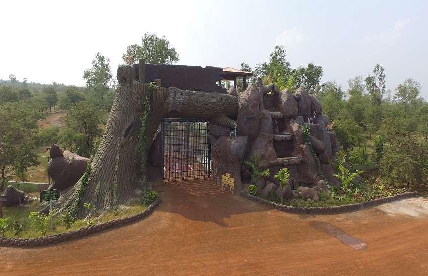 जंगल सफारी नवा रायपुर में प्रचलित प्रवेश शुल्क को आधा करने का निर्णय