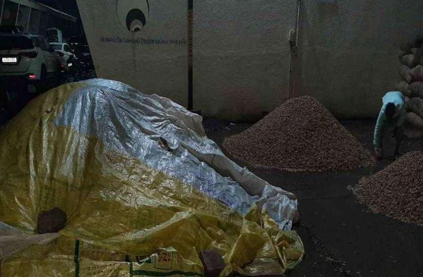 Gujrat News : दलाल व व्यापारियों ने मूंगफली की नीलामी रुकवाई
