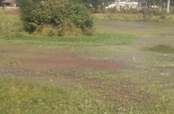 नगर के तालाबों का अस्तित्व खतरे में