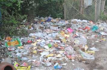 वेस्टेज गीले कचरे से खाद बनाएगी नपा, किसान-निजी कंपनी को बेचकर बढ़ाएगी राजस्व