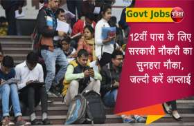 Govt Jobs: 12वीं पास के लिए निकली सरकारी नौकरियां, फटाफट करें अप्लाई