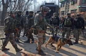 जम्मू-कश्मीर: आतंकियों को ढूंढ़ने के लिए पुंछ में सुरक्षाबलों ने लॉन्च किया सर्च ऑपरेशन