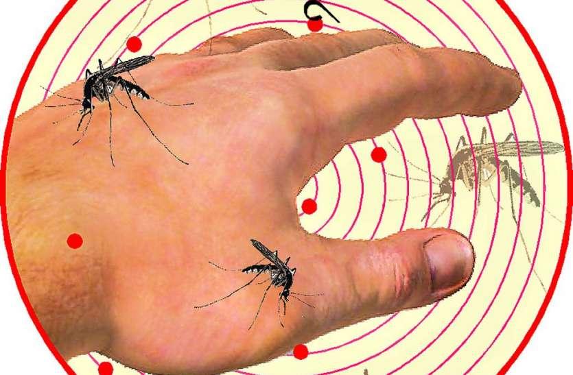 डॉक्टरों के परिवार में दिखे डेंगू के लक्षण, जिले में अब तक18 मरीज