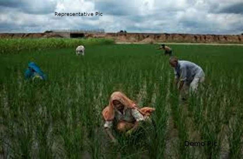 खेती से कमाई करेंगे युवा, जमीन देगी सरकार