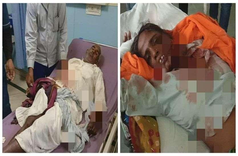 अलवर बफर जोन में लोगों पर लगातार हमला कर रहा पैंथर, आज दो लोगों को किया घायल, दो दिन में 6 जनों पर किया हमला
