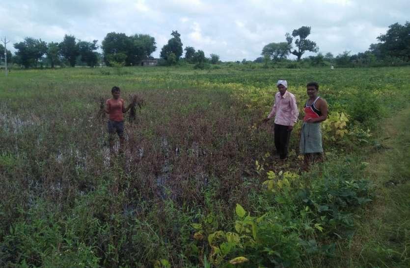 किसानो को मिलेगी नुकसान की २५ प्रतिशत राशि
