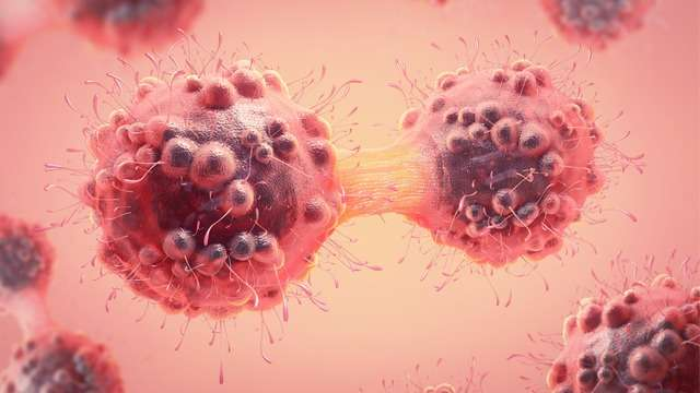 electromagnetic-fields-may-help-prevent-spread-of-breast-cancer-cells-322653.jpg