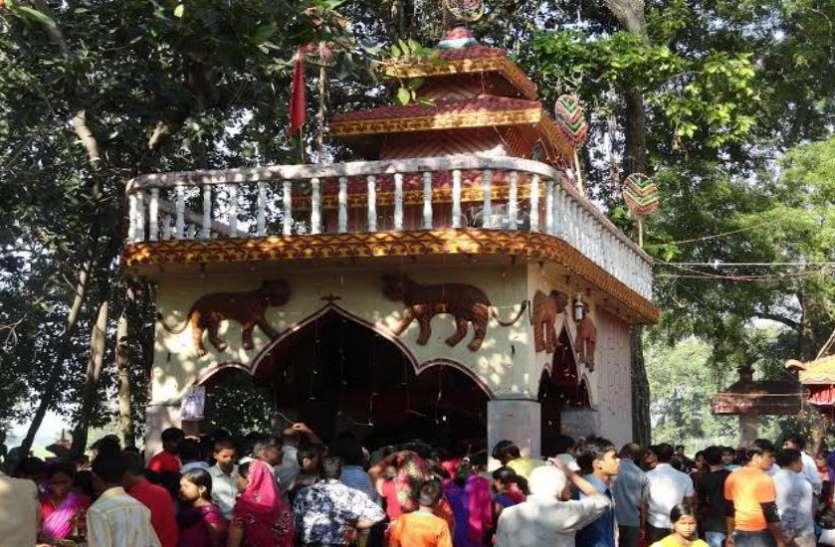 नेपाल: गढ़ीमाई मंदिर में पंचवर्षीय उत्सव की धूम, 30 हजार से अधिक पशुओं की दी जाएगी बलि