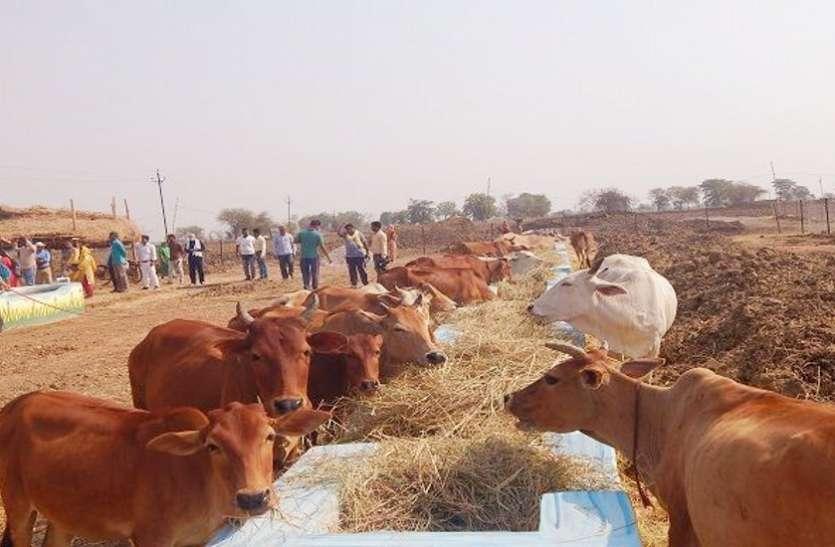 अब गौठानों में पैरा दान देने लगे है किसान