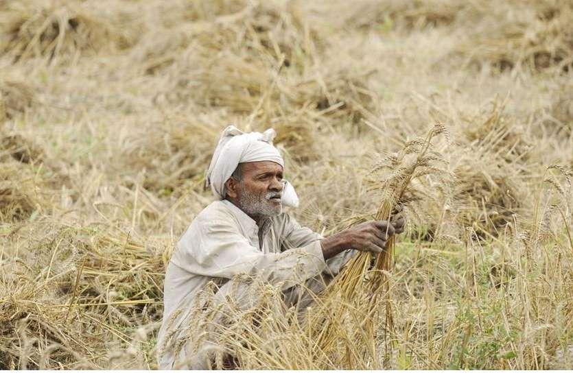 Farmer Loan :  राजस्थान की कर्जमाफी योजना का अध्ययन करेगा महाराष्ट्र