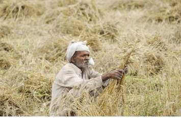 किसानों के लिए अब आई ये अच्छी खबर, रबी के लिए 72 हजार किसानों को 160 करोड़ का बंटेगा ऋण