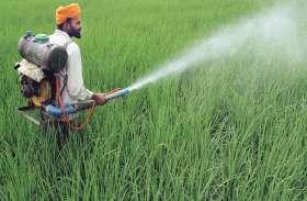 विश्व मृदा दिवस  : रसायनों का प्रयोग से खत्म हो रही है मिट्टी की उर्वरा शक्ति