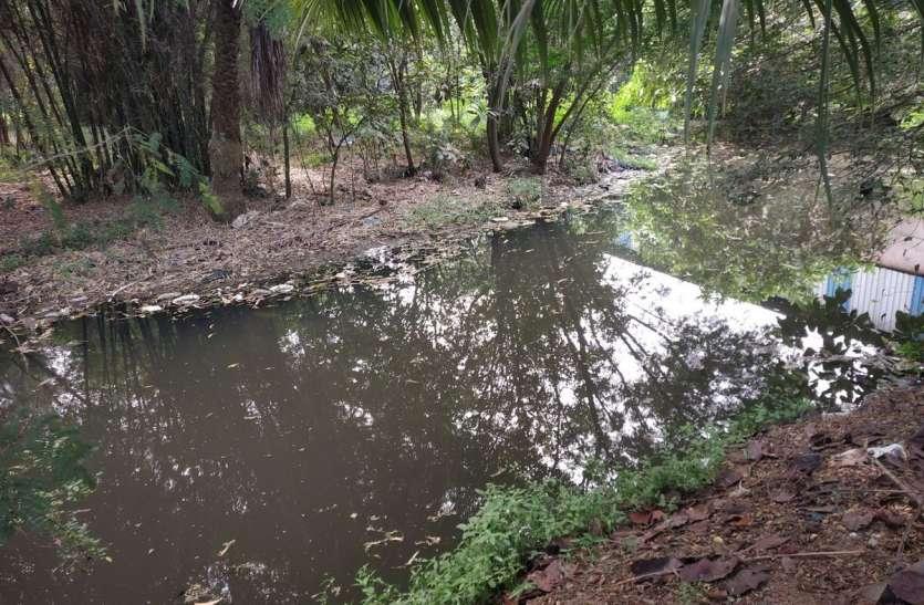 Surat News; दूषित पानी बना सकता है पांजरापोल के पशुओं को बीमार