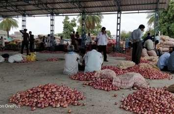 किसानों से दो रुपए में खरीदकर अफसरों ने कमाए लाखों, करोड़ों की प्याज नष्ट होने में दर्शा डाली
