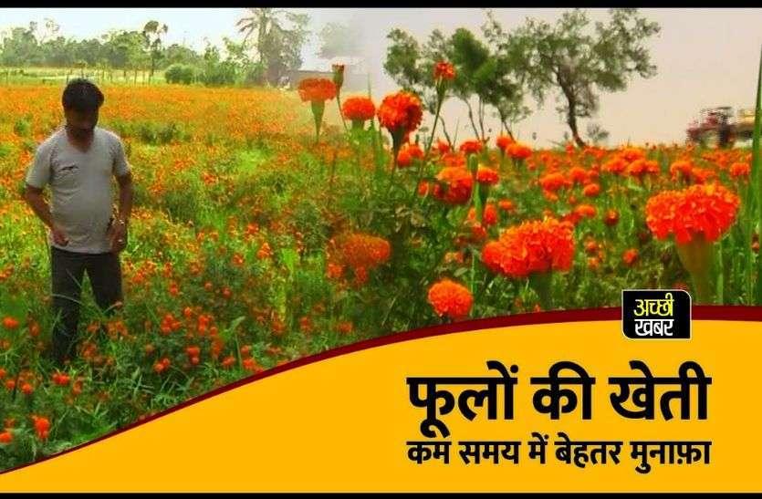 विंटर फ्लावर्स डे पर विशेष : फूलों की खेती में भी रोजगार की अपार संभावनाएं