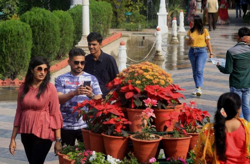 विंटर फ्लावर डे आज : घरों में ही नहीं होटलों में भी महक रहे फूल रंग-बिरंगे फूलों से महक रहे  घर-बार, शादियों में भी बढ़ा रहे शोभा