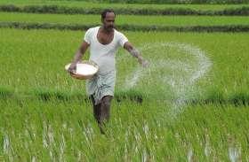 यूरिया की कमी से काला बाजारी में गुजरात से यूरिया खरीद रहे किसान