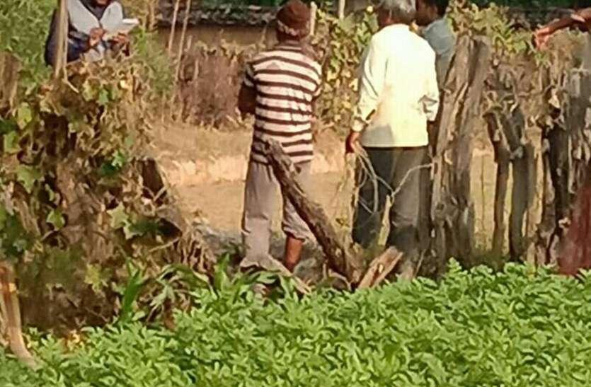 बिजली की चोरी पकडऩे शुरू हुई गांवों की घेराबंदी, एमपीइबी अधिकारियों ने उतारी कुल तीन टीम
