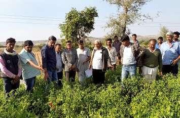 ओलावृष्टि से हुए फसल खराबे का जायजा लेने पहुंचे दूसरे दिन भी खेतों में पहुंचे विधायक