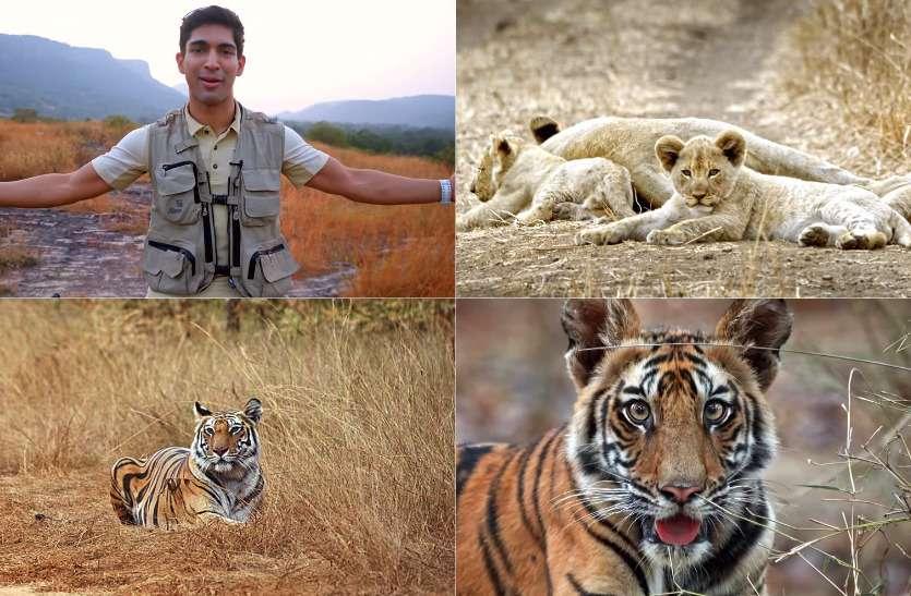 सुयश के साथ देखिए बांधवगढ़ नेशनल पार्क की खूबसूरती, देखने के बाद जरूर यहां आने का करेगा मन