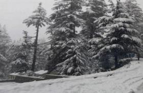 उत्तराखंड: पर्वतीय इलाकों में हैवी कोल्ड अलर्ट, स्कूल और कॉलेज रहेंगे बंद