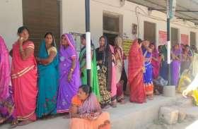 मुंगेली जिले में 12 बजे तक 25 प्रतिशत मतदान
