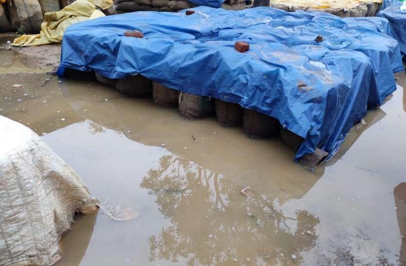 खुली में रखी 10  हजार क्विंटल से ज्यादा धान बारिश में भीगी, परिवहन में देरी